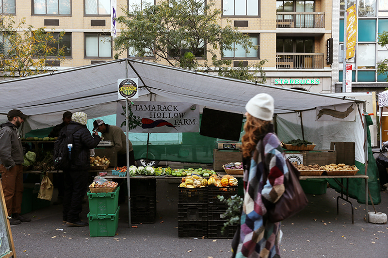 Union Square Greenmarket (in New York)